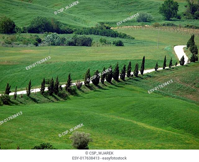 The landscape of the Val d?Orcia. Tuscany. Italiy