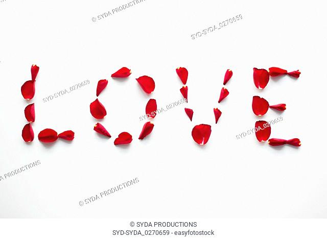 word love made of red rose petals