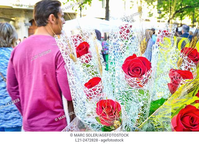 Roses. Sant Jordi's day, celebrated on 23 April. Barcelona, Catalonia, Spain