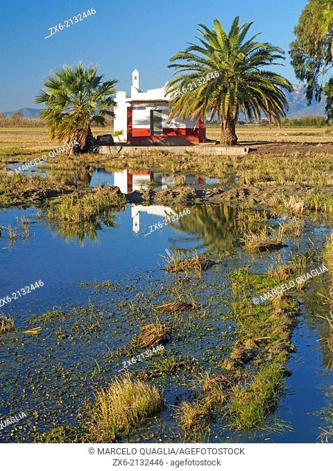 Typical farm house within ricefields. Ebro River Delta Natural Park, Tarragona province, Catalonia, Spain