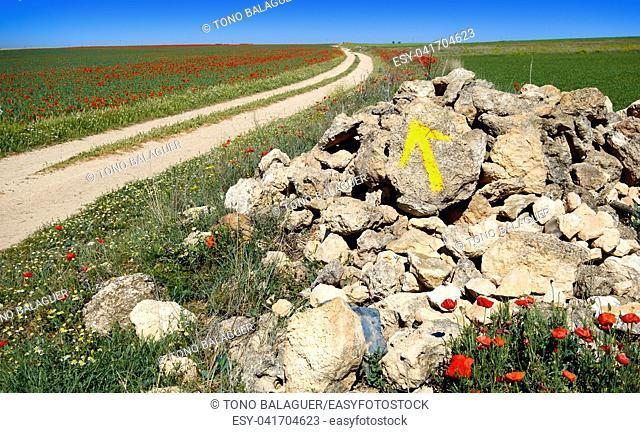 Castile La Mancha arrow sign Camino de Santiago saint James Way of Levante