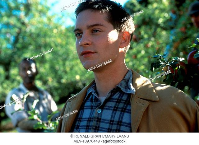 THE CIDER HOUSE RULES [US 1999] TOBEY MAGUIRE