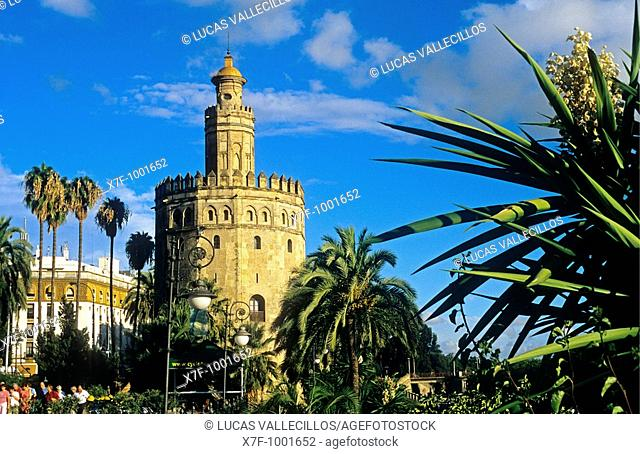 Gold tower  Seville, Andalusia, Spain