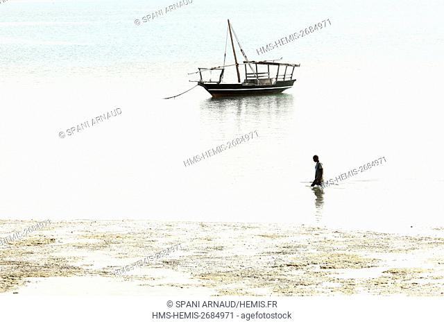 Tanzania, Zanzibar, Chapwani, fisherman walking on low tide to strike