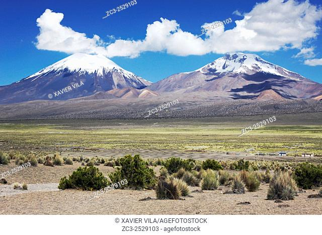 Landscape of the National park of Sajama, with old volcano and snow, Altiplano, Bolivia