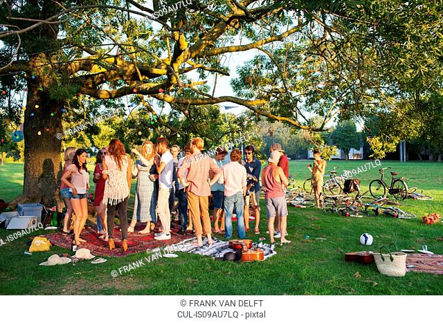 Crowd of adults under a tree at sunset party in park