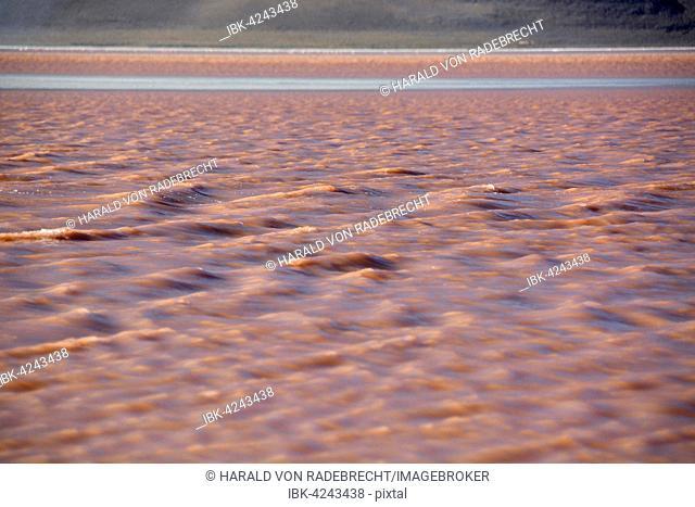 Laguna Colorada with red water caused by high algae content, in Uyuni, Lipez, Bolivia