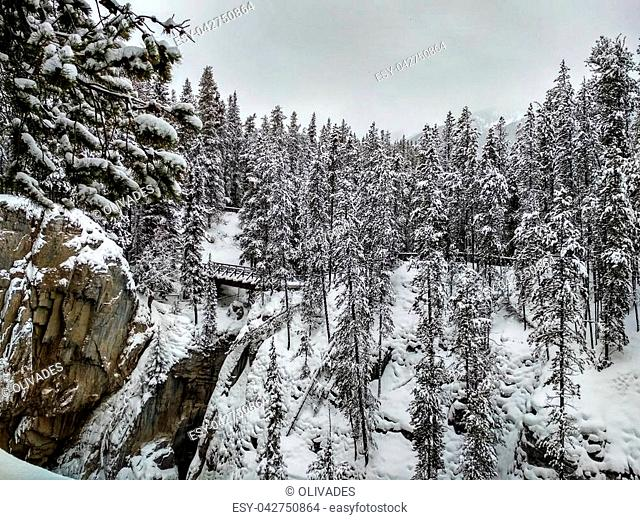 Icy Sunwapta Falls Bridge in Winter surrounded my snowy trees