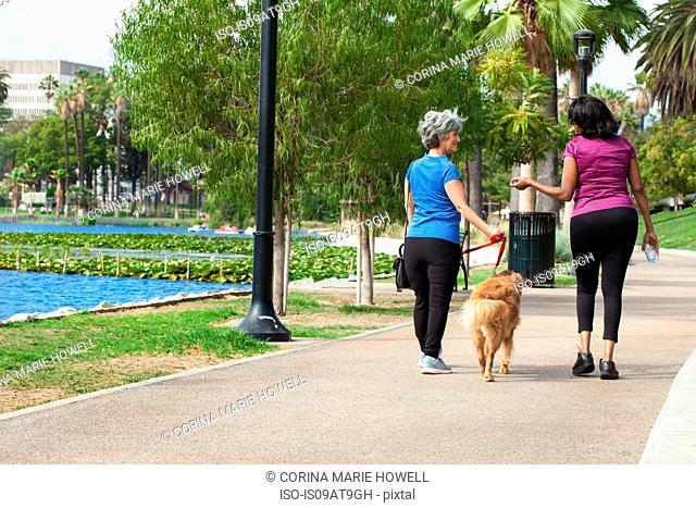 Mature female friends, walking dog in park, rear view