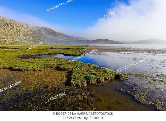 Scenic view. Bale Mountains National Park. Ethiopia