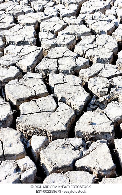 dry soil, Parc Regional de Camargue, Provence, France