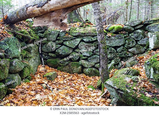 The stone work of an abandoned cellar hole along the old North and South Road (now Long Pond Road) in Benton, New Hampshire