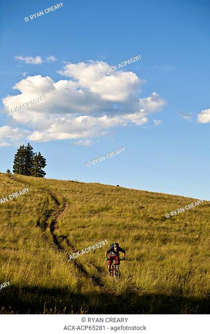 A male mountain biker the rides the amazing singletrack of Docters Park Trail, Crested Butte, CO