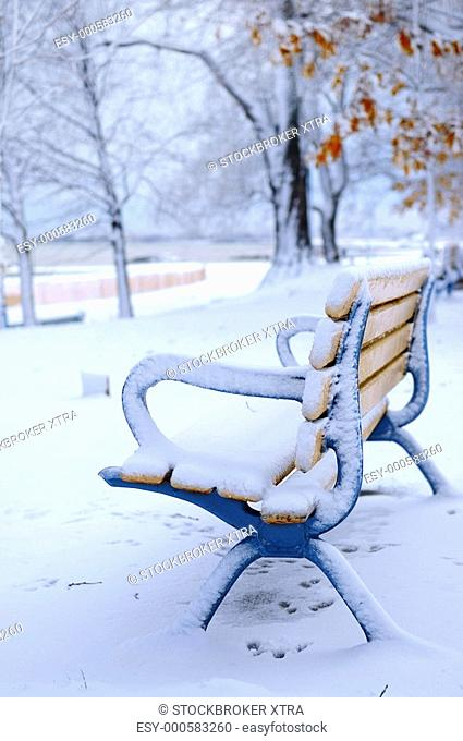 Winter bench covered with snow in an empty park. Beach area, Toronto, Canada