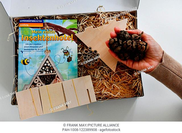 Building a bug hotel, Germany, city of Seesen, 15. July 2018. Photo: Frank May (model released) | usage worldwide. - Seesen/Niedersachsen/Germany