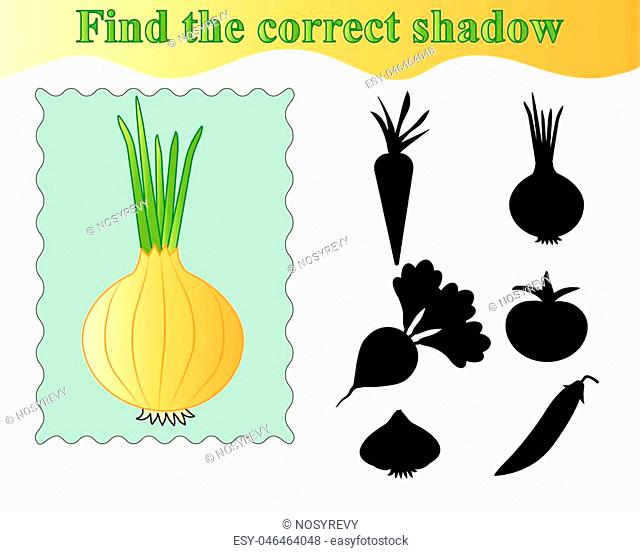 Onion. Find the correct shadow, educational game for kids. Vector illustration