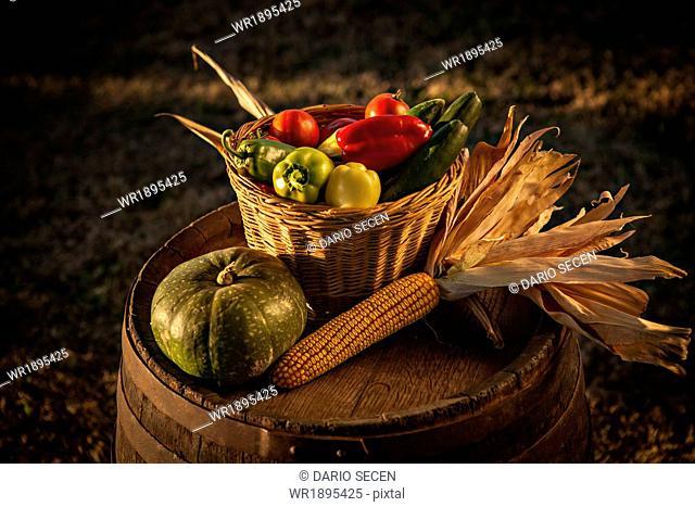 Harvest, Fresh Vegetables, Croatia, Slavonia, Europe