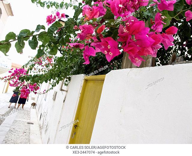 Street scene. Balearic Islands, Spain
