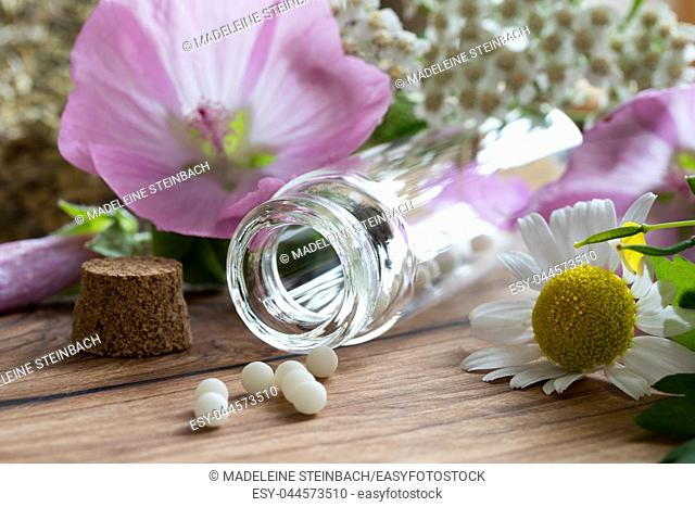 A bottle of homeopathic globules with chamomile, yarrow and other herbs and flowers in the background