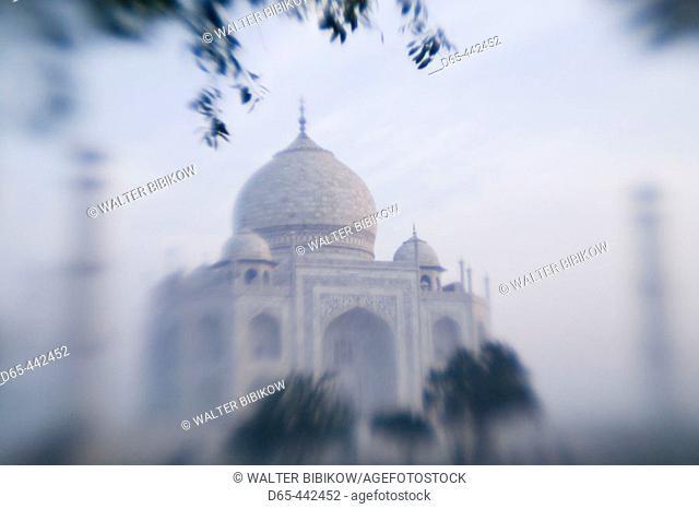 Taj Mahal. Morning. Defocussed. Agra. Uttar Pradesh. India