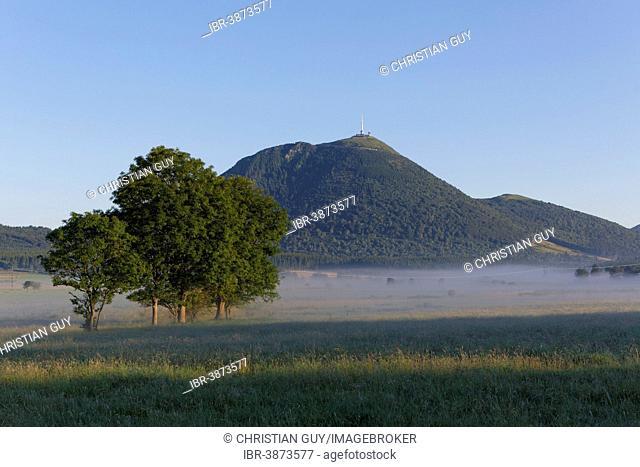 Lachamp plain, Puy de Dome, Parc Naturel Regional des Volcans d'Auvergne, Auvergne, France