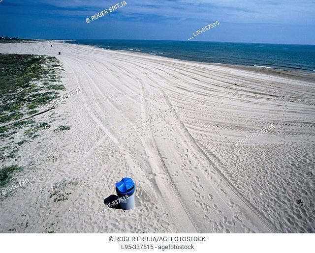 Beach. Delta del llobregat. Spain
