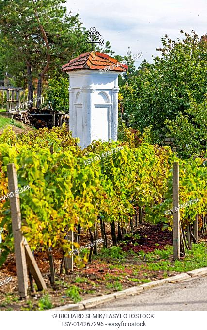 God's torture with autumnal vineyard, Pritluky, Czech Republic