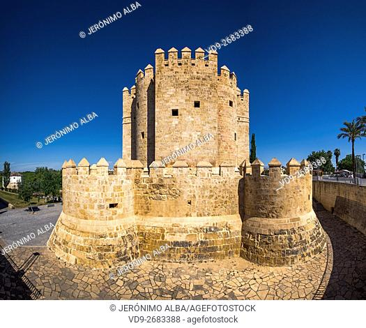 Torre de la Calahorra medieval tower, Cordoba City Andalusia, Spain, Europe