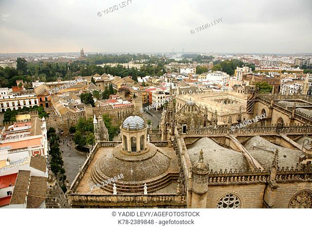View over the rooftops Santa Cruz seen from the summit of La Giralda, Seville, Andalucia, Spain