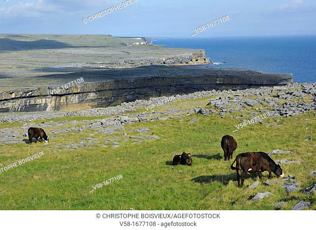 Ireland, County Galway, Aran Islands, Inishmore, The cliffs and meadows from the top of Dun Aengus Dun Aonghasa fort
