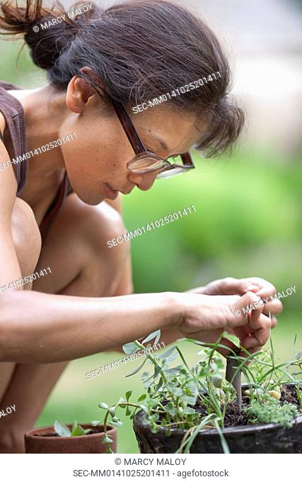 Young woman planting flower in garden