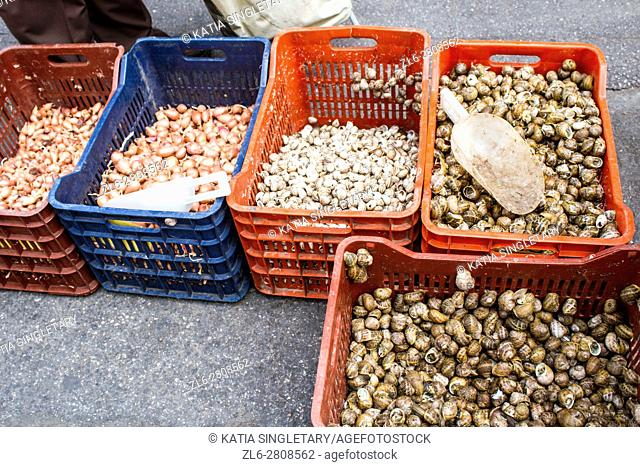 Shallots, small onions, white and dark Periwinkle Snails, white and dark bigorneau, for sale in the street in bulk colorful plastic contener