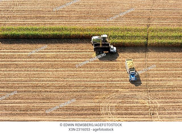 Aerial of harvesting corn silage in Ridgley, Maryland, USA