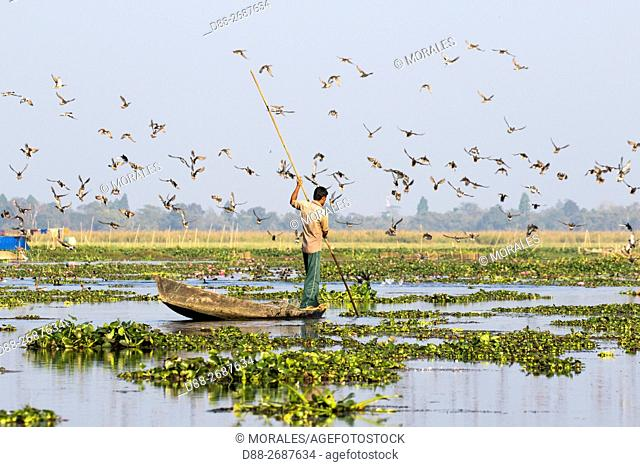 South east Asia, India,Assam state,Brahmapoutra,fishing with nets and traps