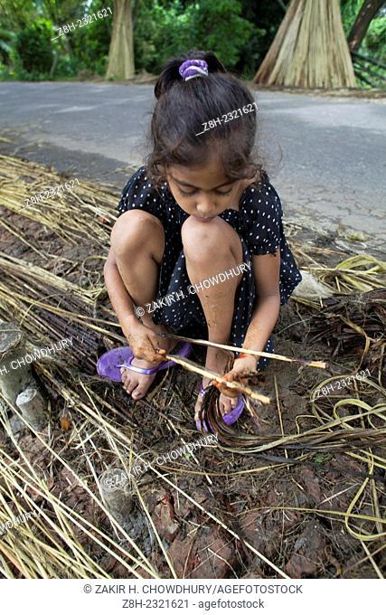 Farmer processing jute from jute plants
