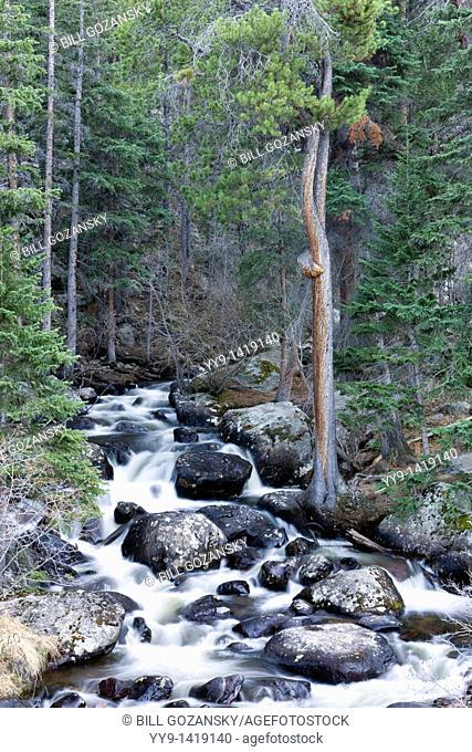 Cascading creek / waterfall - Rocky Mountain National Park - Estes Park, Colorado