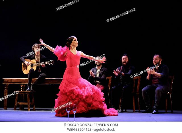 Spanish flamenco dancer Olga Pericet performs during the show 'The Spine that Wanted to be Flower or the Flower that dreamed about being a Flamenco Dancer' at...