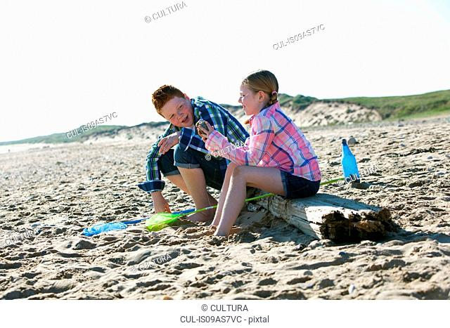 Side view of girl and boy sitting on driftwood talking