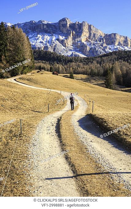 Trekker in badia valley, in the background Sas dla Crusc mountain