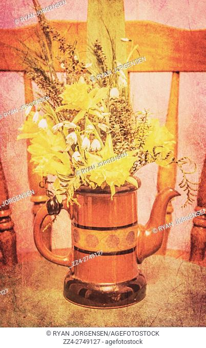 Textured and toned fine art still life with yellow spring daffodils and grasses in an old ceramic tea or coffee pot with spout on a wooden table in front of a...