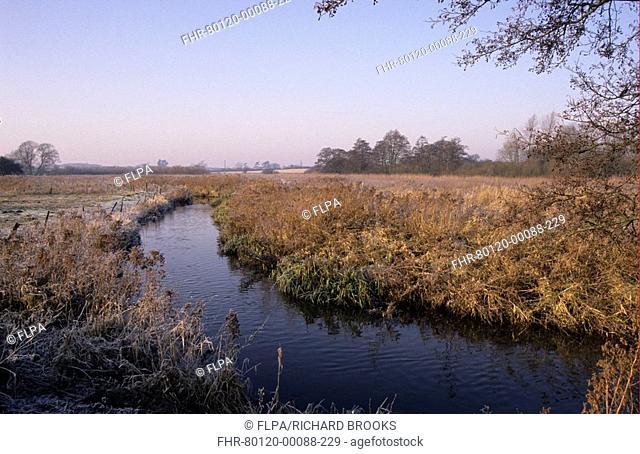 River flowing through fenland, River Wensum, Sculthorpe Fen, Norfolk, England, winter
