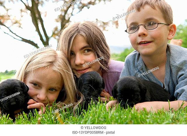 Children playing with puppies