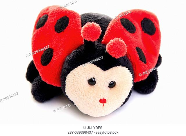 Ladybird toy isolated on a white background