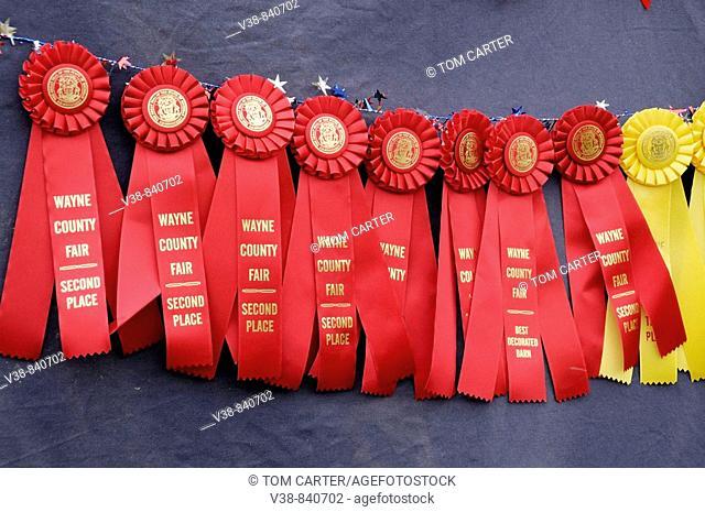 Wayne County, Michigan  Fair  2nd place ribbons
