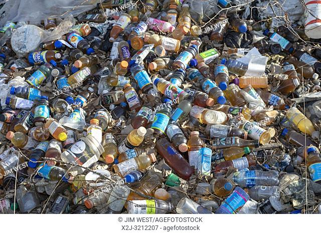 Detroit, Michigan - Many hundreds of bottles and cans illegally dumped in a wooded area near downtown. Many are juice or water containers
