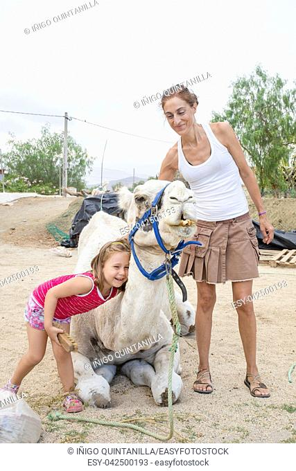 laughing five years old cute girl embracing dromedary sitting in countryside next to mother