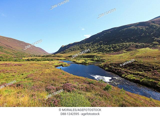 Moor at Alladale estate  Inverness  Scotland