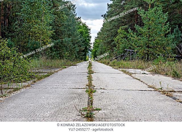 straight road to Chernobyl-2 military base next to Duga-3 Soviet radar system in Chernobyl Exclusion Zone, Ukraine