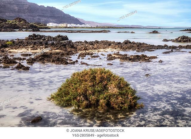 Orzola, Haria, Lanzarote, Canary Islands, Spain