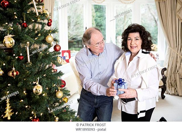Senior couple standing with gift parcel by Christmas tree